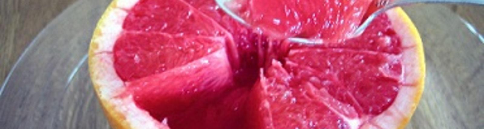 Grapefruitkern - Extrakt